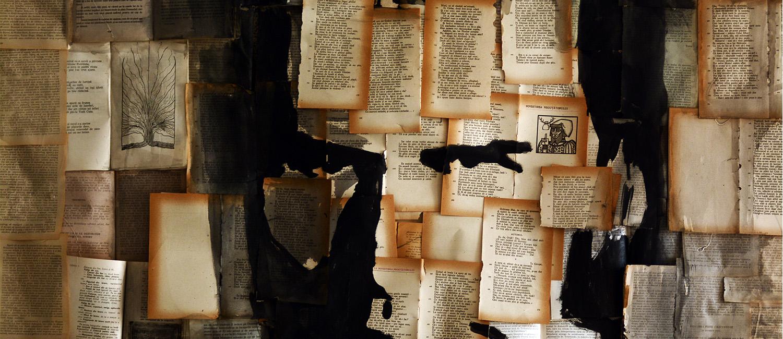 Bibliotheca Musei Sabesiensis